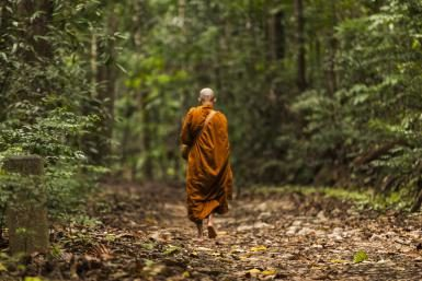 The Power of Metta: A Buddhist Story