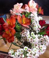 San G atar flowers.jpg