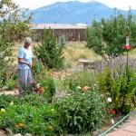 Marcia in her garden