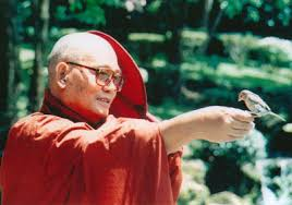 The late Venerable Sayadaw U Pandita on the Urgency of Practice