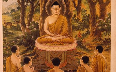 """Forward by His Holiness the Dalai Lama to """"The Buddha's Teachings on Social & Communal Harmony"""""""