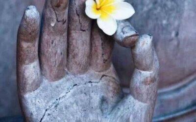 """Kindness"" by Naomi Shihab Nye"