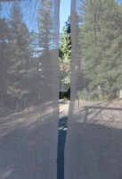 Columbine inside 3.jpg