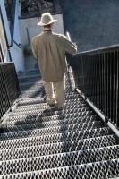 Yogis walking & such 3.jpg