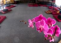 Meditation hall 22.jpg