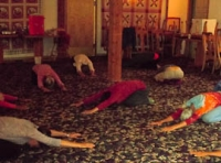 Yogis in movement session 8.jpg