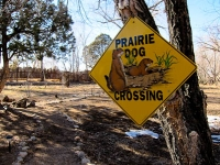 San G prarie dog sign.jpg