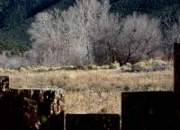 Beyond San G fence.jpg