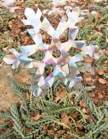 San G shiny snowflake.jpg
