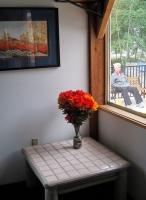 Columbine flowers2.jpg