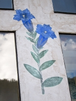 Columbine flowers5.jpg